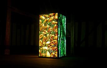 Green and yellow light box installation in a dark barn