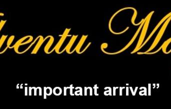 "Adventu Magna - Latin for ""important arrival"""